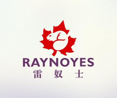 雷奴士-RAYNOYES