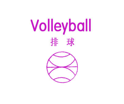 排球-VOLLEYBALL