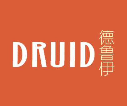 德鲁伊-DRUID