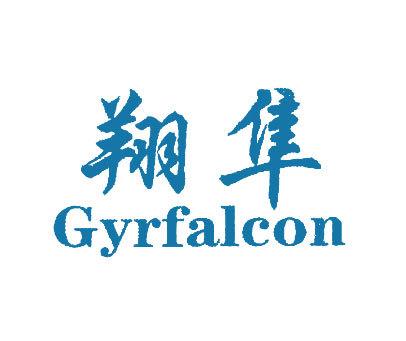 翔隼-GYRFALCON