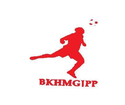 BKHMGIPP
