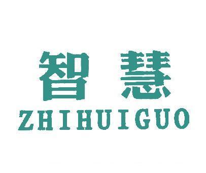 智慧-ZHIHUIGUO
