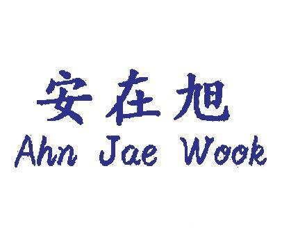 安在旭-AHNJAEWOOK