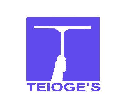 TEIOGE S