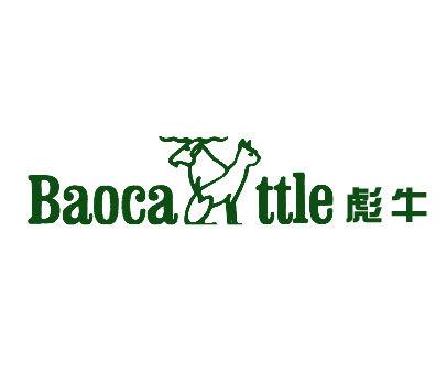 彪牛-BAOCATTLE