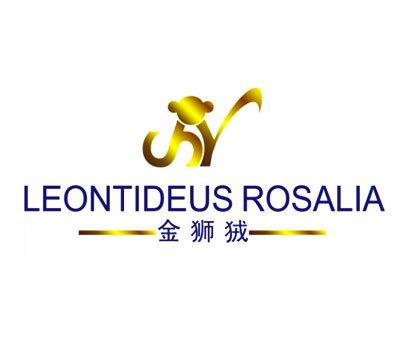 金狮狨-LEONTIDEUSROSALIA