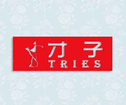 才子-TRIES
