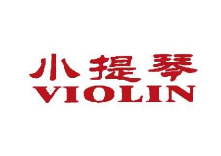 小提琴-VIOLIN