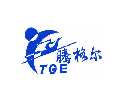 腾格尔-TGE