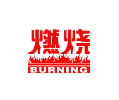 燃烧-BURNING