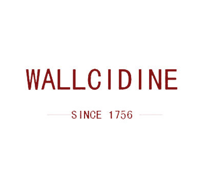 WALLCIDINESINCE-1756