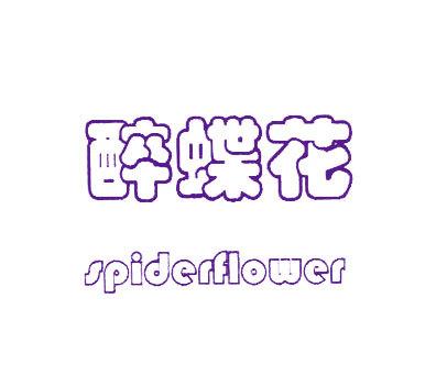 醉蝶花-SPIDERFLOWER