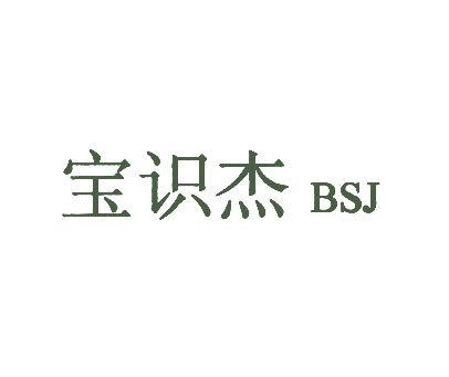 宝识杰-BSJ