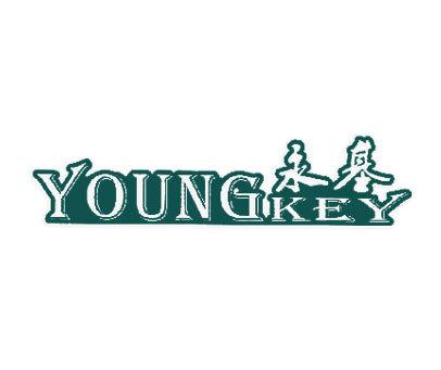 永基-YOUNGKEY