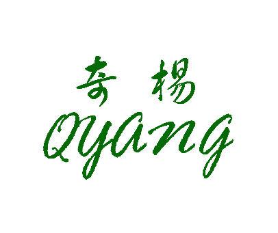奇杨-QYANG