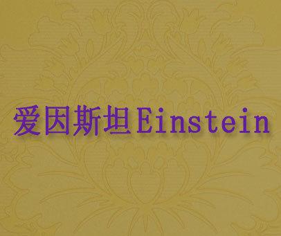爱因斯坦-EINSTEIN
