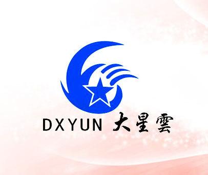 大星云-DXYUN