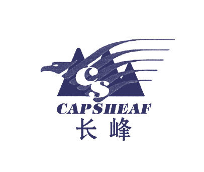 长峰顶点-CSCAPSIIEAF