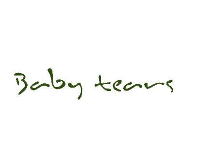 BABYTEARS