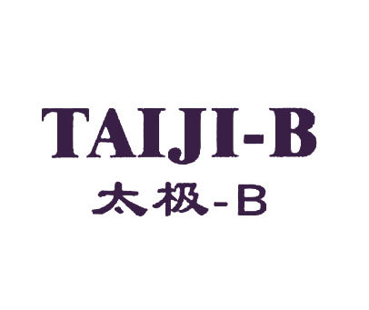 太极-B-TAIJIB