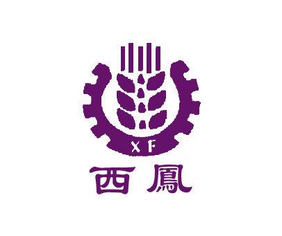 西凤-XF