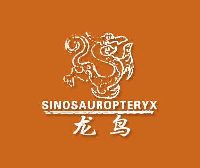 龙鸟-SINOSAUROPTERYX