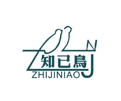 知己鸟-ZJN