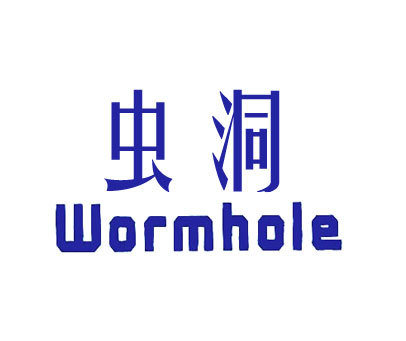 虫洞-WORMHOLE