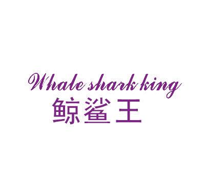 鲸鲨王-WHALESHARKKING