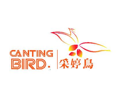 采婷鸟-CANTINGBIRD