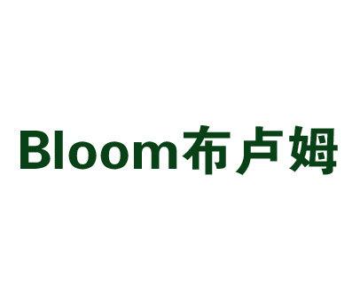 布卢姆-BLOOM