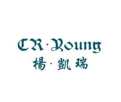 杨凯瑞-CRYOUNG