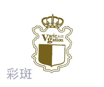 彩斑-VARIEGATION
