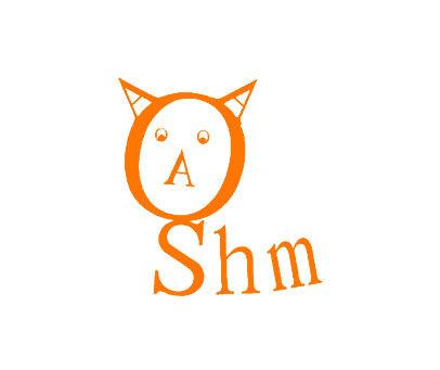 AAA-SHM