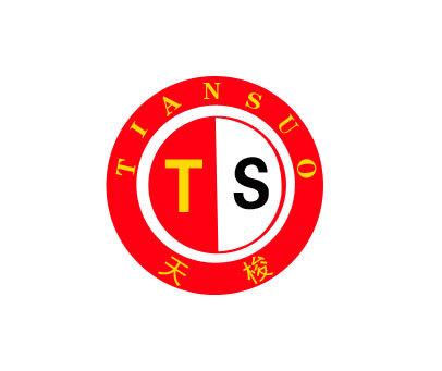 天梭-TS
