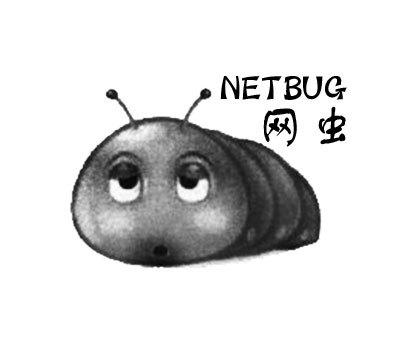 网虫-NETBUG