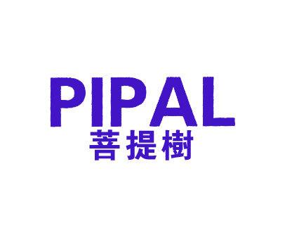 菩提树-PIPAL