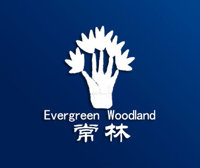 常林-EVERGREENWOODLAND