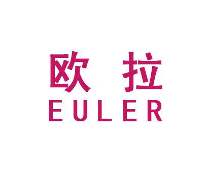欧拉-EULER