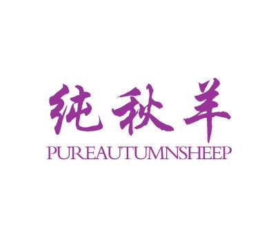 纯秋羊-PUREAUTUMNSHEEP