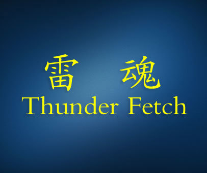 雷魂-THUNDERFETCH