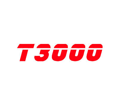 T-3000