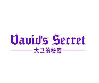 大卫的秘密-DAVID SSECRET