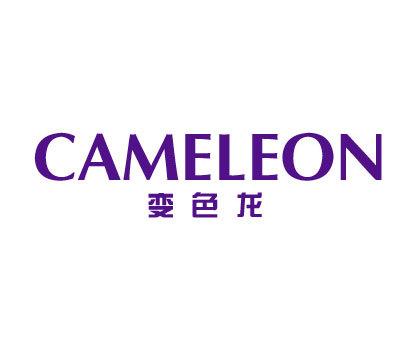 变色龙-CAMELEON