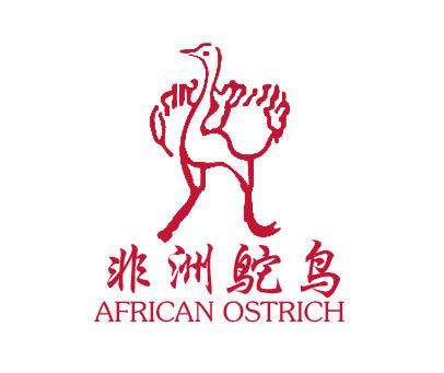 非洲鸵鸟-AFRICANOSTRICH