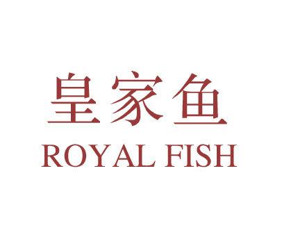 皇家鱼-ROYALFISH