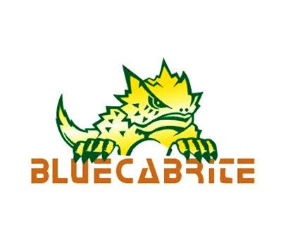 BLUECABRITE