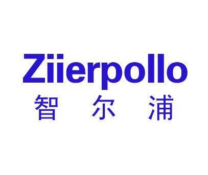 智尔浦-ZIIERPOLLO