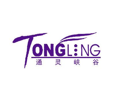 通灵峡谷-TONGLING