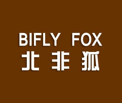 北非狐-BIFLYFOX